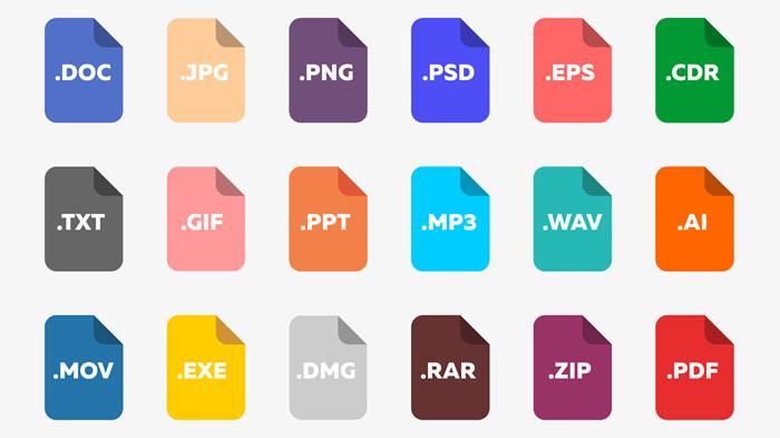 file extensions.jpg
